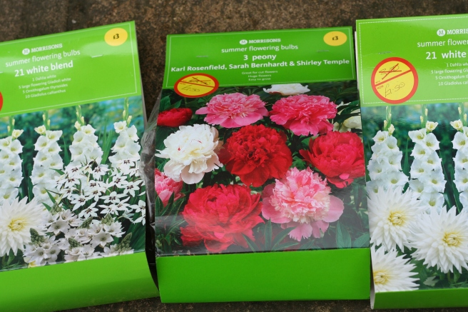 love a bargain, love peonies too.