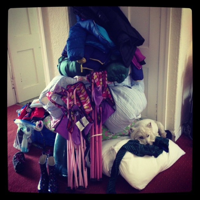 spot the dog.. all this for 2 nights (no clothes in this pile)